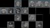 Senshi Revenge archive project-unknown_cr.png